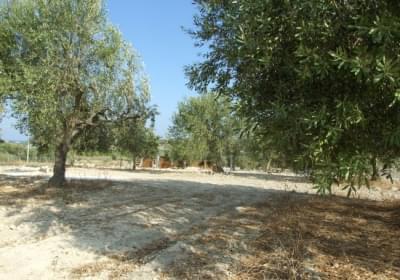 Campeggio Agri Camping Sophia